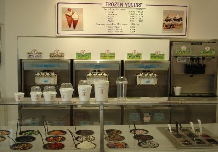 Very Successful Ice Cream Shop with Potential to Franchise
